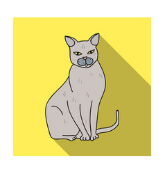 Chartreux icon in flat style isolated on white vector