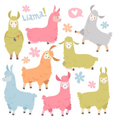 cute llama set ballamas alpaca wild lama vector image