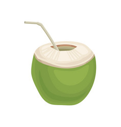 Half of young green coconuts with drinking straw vector