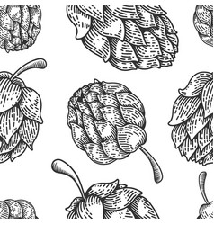 seamless pattern with beer hop in engraving style vector image