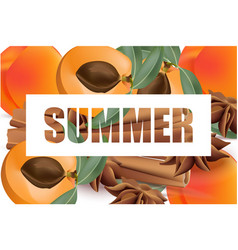 Summer appricot and cinnamon background pattern vector