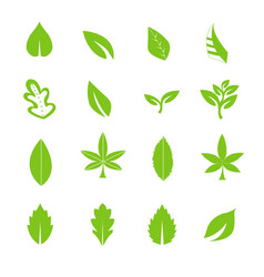 green leave icons set vector image vector image