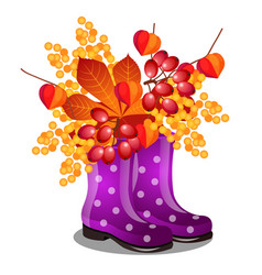 composition of rubber purple boots and dry autumn vector image