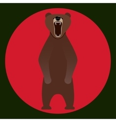 Image bear standing on its hind legs vector