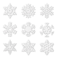 Paper cut snow flakes vector