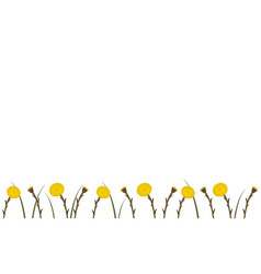Wallpaper coltsfoot in springtime vector