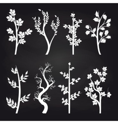White tree silhouette on chalkboard vector image