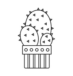 cactus succulent flat linear icon vector image vector image