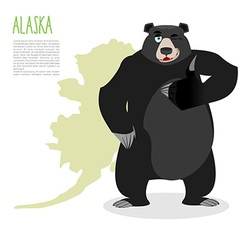 American black bear baribal and Alaska Grizzlies vector image vector image