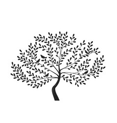 decorative tree with birds on branches silhouette vector image vector image