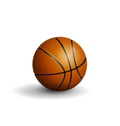 Basketball isolated vector