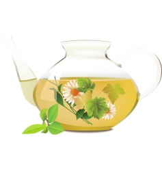 glass teapot vector image