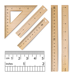School rulers realistic classic wooden vector