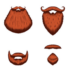 set beard in engraving style on white vector image