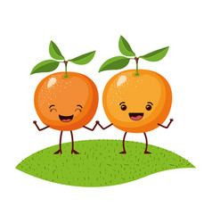 White background with realistic pair of orange vector