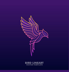 bird colorful line art concept design vector image