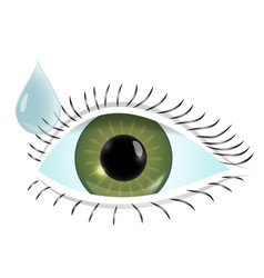 flat of world sight day vector image