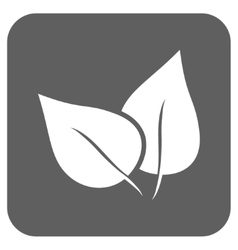 Flora Plant Flat Squared Icon vector