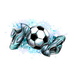 Football boots with ball from a splash of vector