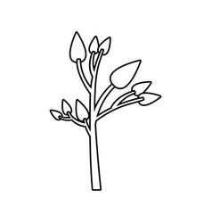 Monochrome silhouette of small tree with leafs vector