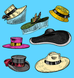summer hats collection for elegant woman female vector image