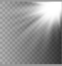 sunlight lens flare vector image