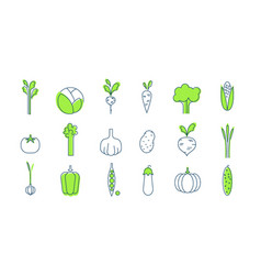 vegetable icons set healthy vegetarian food vector image