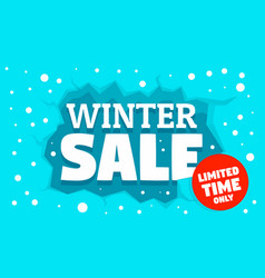 winter special sale concept banner flat style vector image