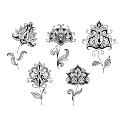 Black and white floral motifs in persian style vector image
