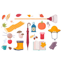 autumn symbols and elements in vector image