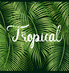 Beautiful floral tropical vector