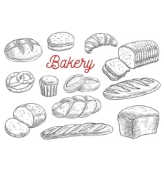 Bread and bakery products sketches vector