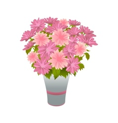 Pink asters in blue vase vector image