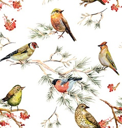 seamless texture of forest birds watercolor vector image