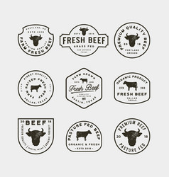 set of premium fresh beef labels vector image