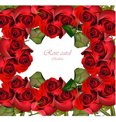red roses card valentine day romantic vector image vector image