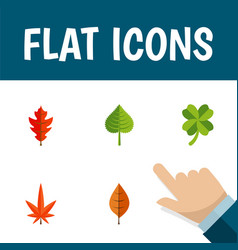 Flat icon leaves set of leafage aspen frond and vector