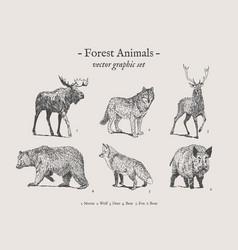 Forest animals vintage set vector