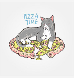 cat pizza sleep vector image