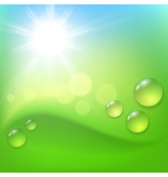 Green abstract background with drop of dew and sun vector image