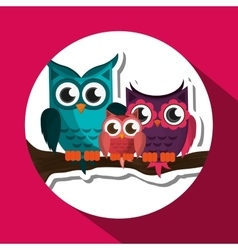 Group of owls graphic design vector image