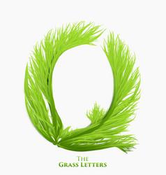 letter q of juicy grass alphabet green q vector image