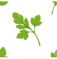 parsley seasoning seamless pattern salad or dish vector image