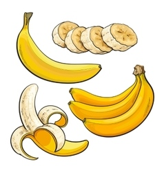 Sliced peeled singl and bunch three ripe vector