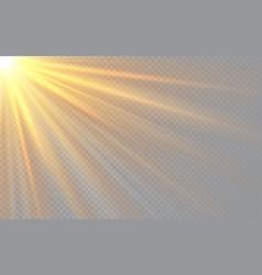 Sunlight special lens flash light effect on vector