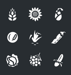 set of harvest icons vector image vector image