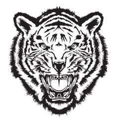 Angry tiger head black and white vector