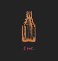 Beer bottle hand drawn vector