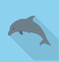 dolphin icon set of great flat icons design vector image