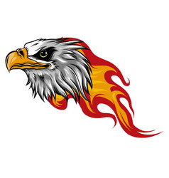 eagle head with flames design vector image